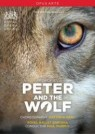 Peter and the Wolf | Prokofiev