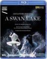 Swan Lake - Oslo 2014 | Blu-Ray